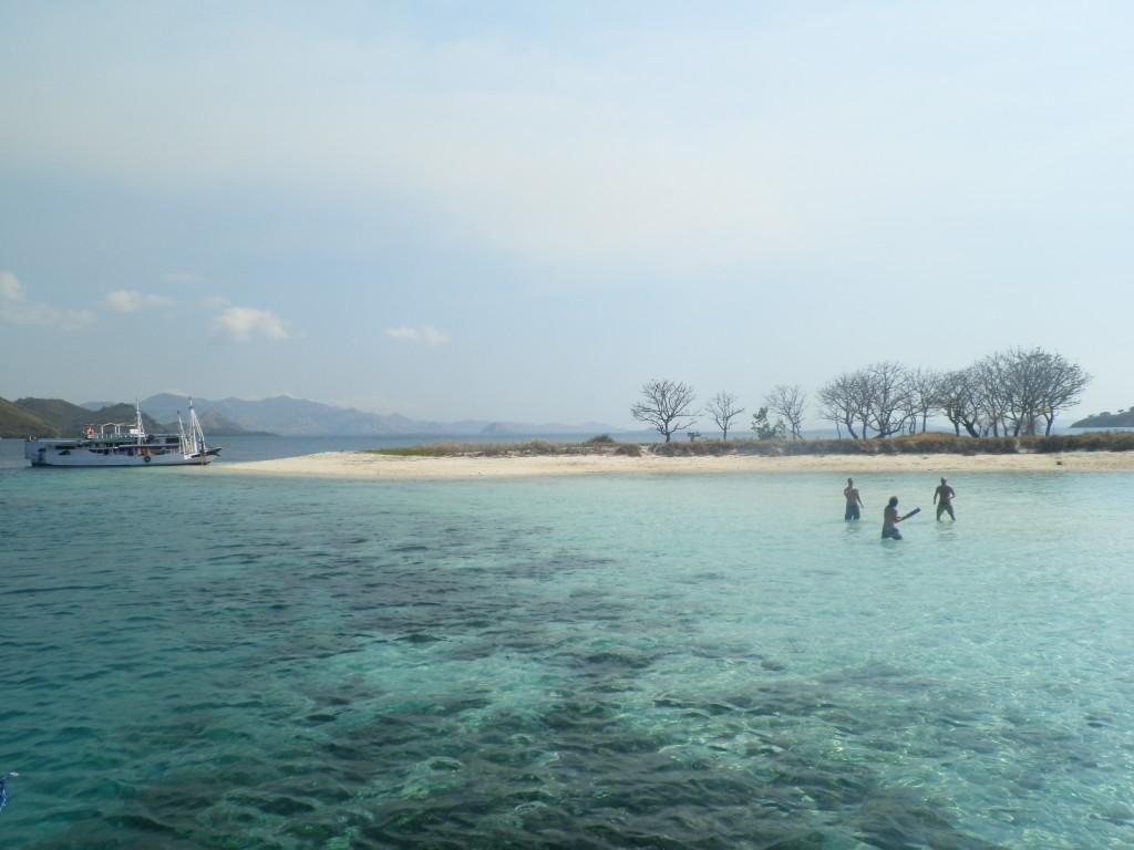 Catching practice in the ocean