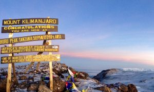 Climbing Kilimanjaro – an unforgettable feeling standing on the roof of Africa