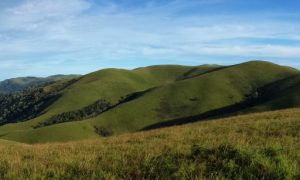Walking across Malawi's Nyika Plateau to Livingstonia