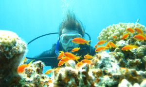 Diving in Egypt and Jordan's Red Sea