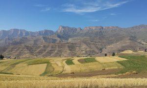 Trekking in Ethiopia's Simien Mountains